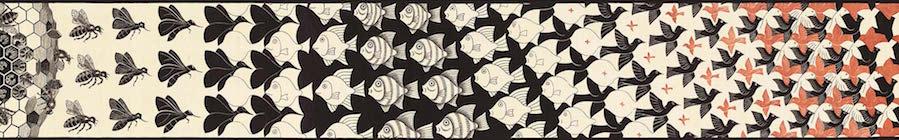 Doppio nobel 2015 al neutrino scienza e scuola for Escher metamorfosi